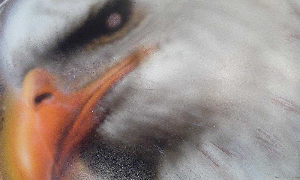 Vrana-airbrush